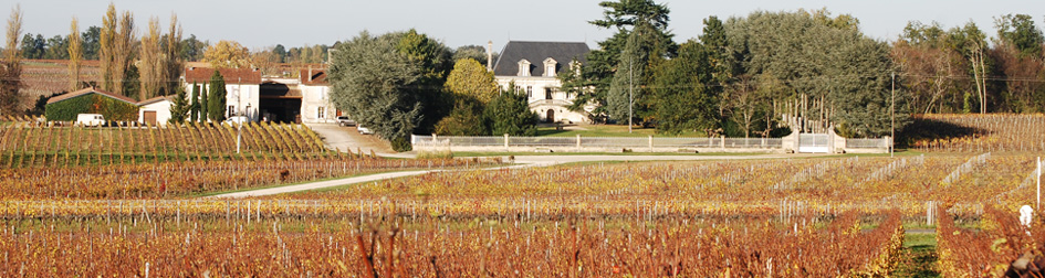 chateau maison blanche vin bio